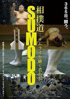 sumo_po.jpg